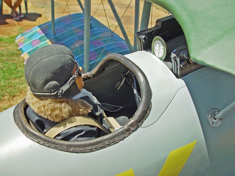 Pfalz-4