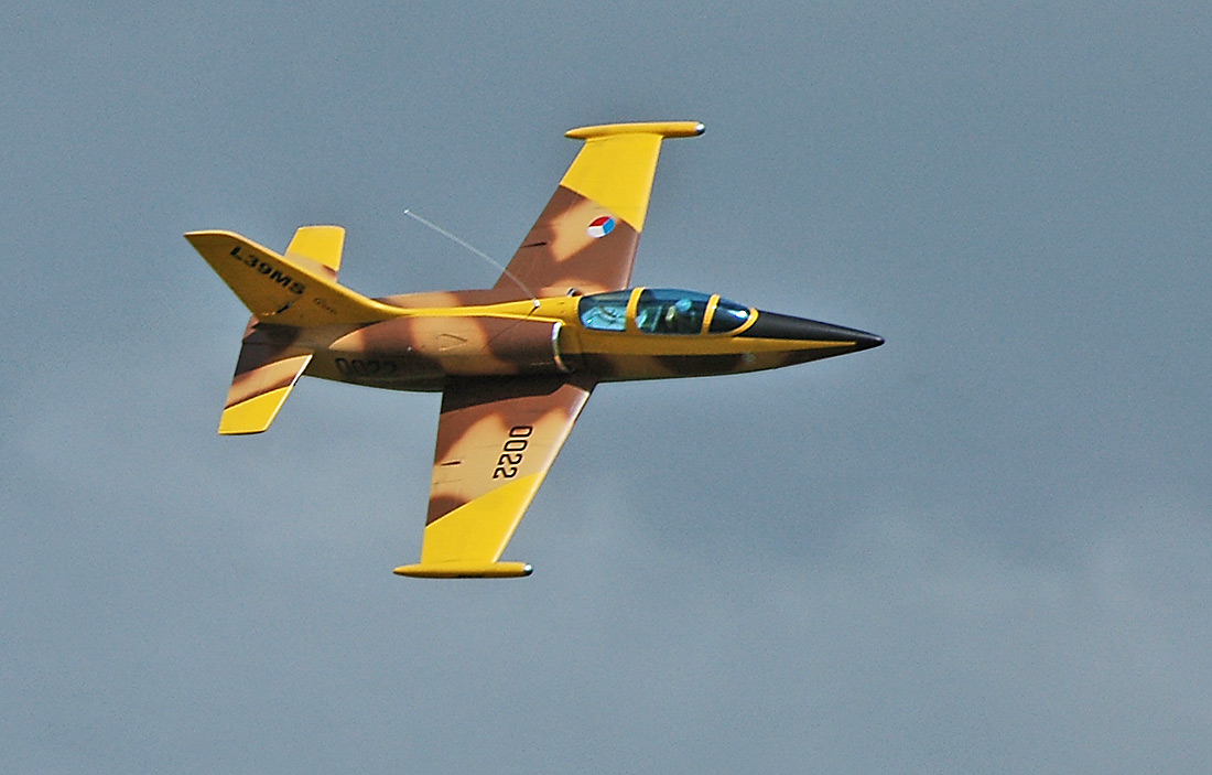 Garry Turna's L-39 Albatross